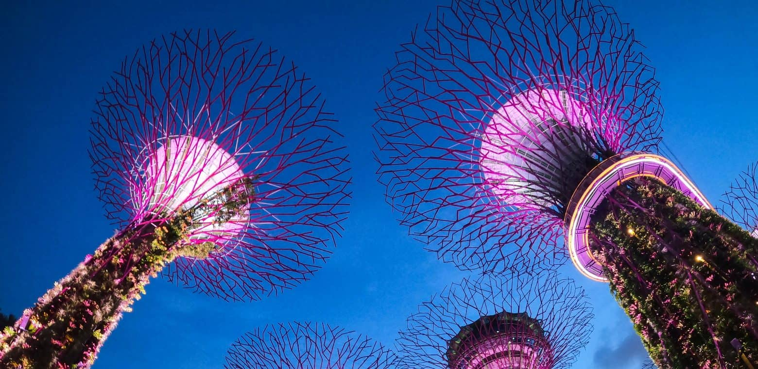 Singapore is one of the world's greenest large cities.
